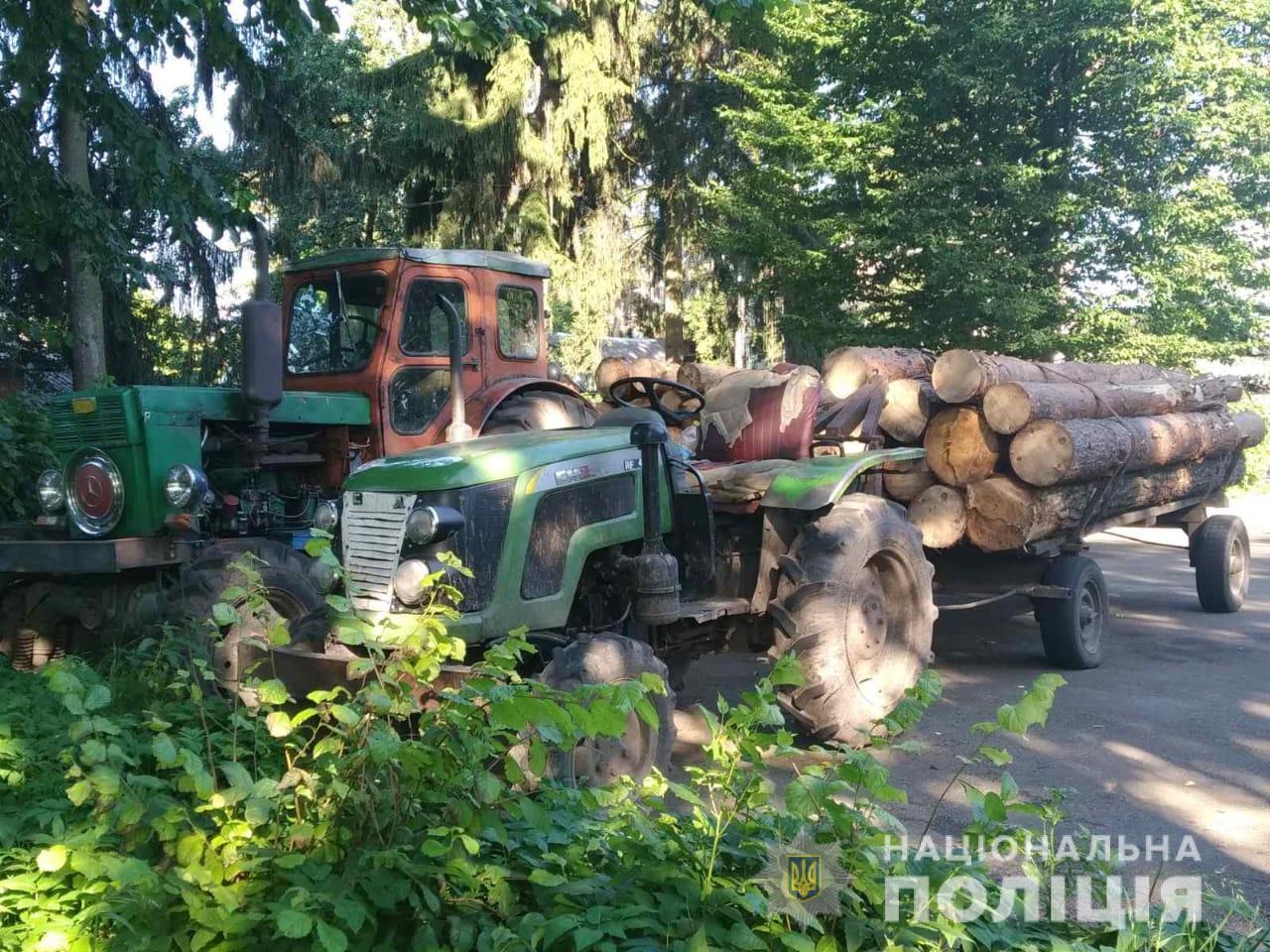 На Житомирщині продовжуть красти ліс - поліція Зупини трактори з сосною